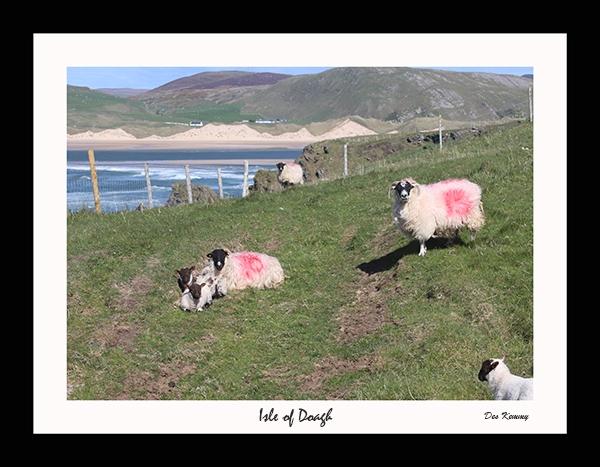 Isle of Doagh